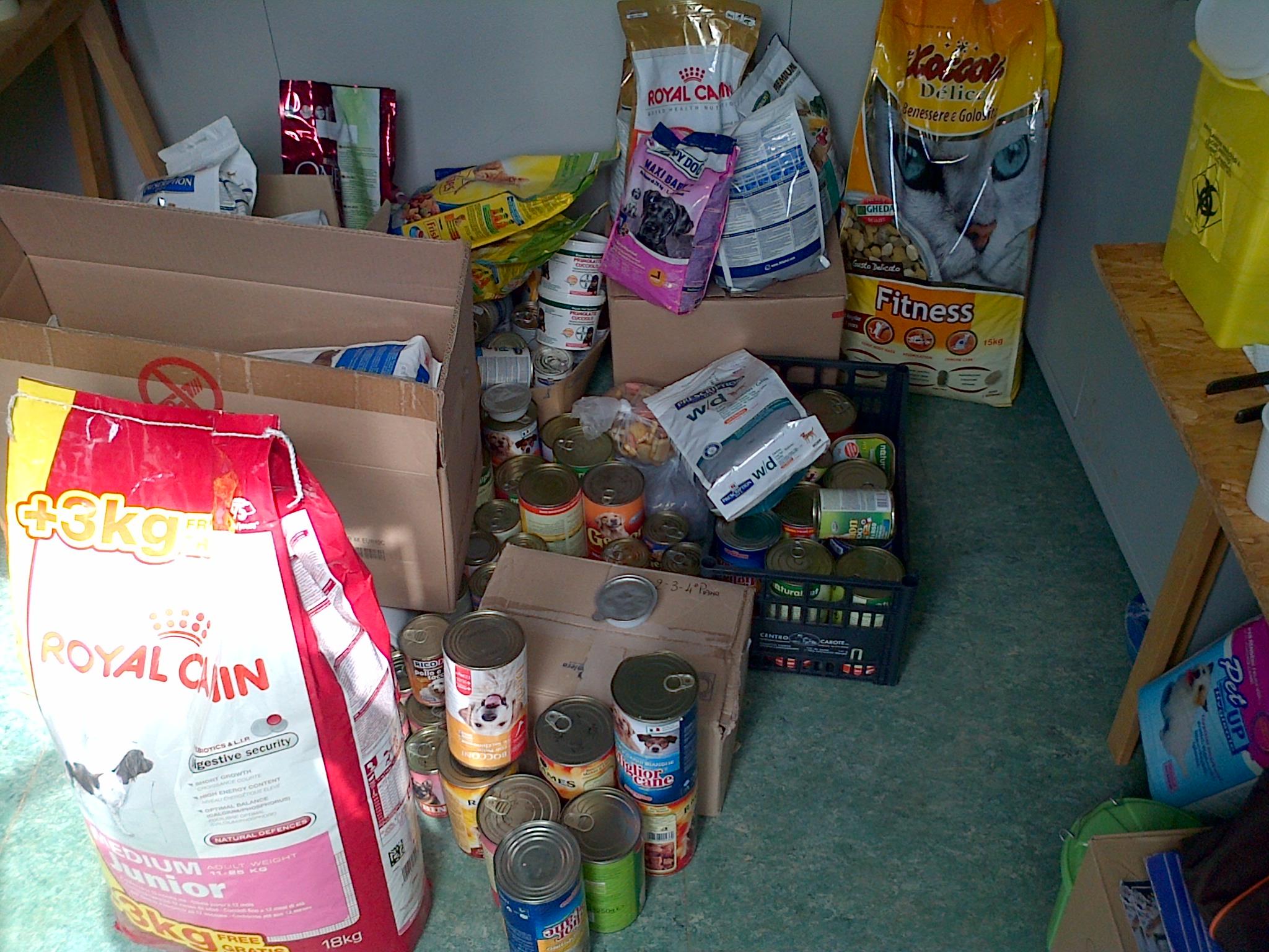 raccolta cibo 2013