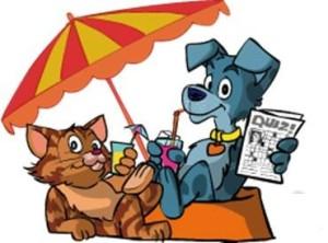 cane gatto in vacanza
