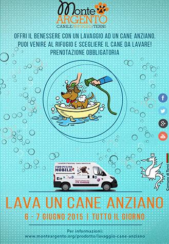 locandina-lavaggio-sito
