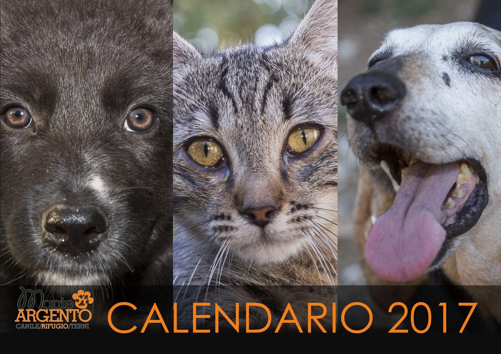 calendario 2017 monte argento